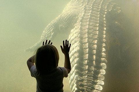croc and kid